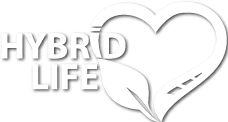 Hybrid Life : Forum Automobile Hybride